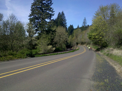 Road from Blodgett to Summit
