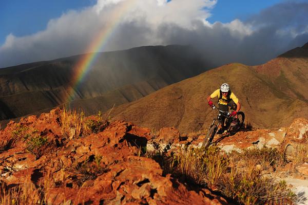 Bike Tours on Maui