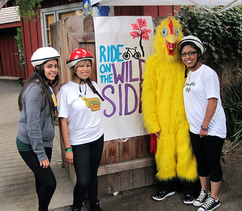 Don's Net Cafe are being part of the Ride on the Wild Side (EDC event in October 2010) Karina, Ana, chicken & ?