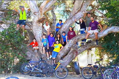 group photo in the tree (photo taken by Michael Guttierez)