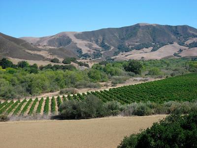 Beautiful Santa Inez Valley
