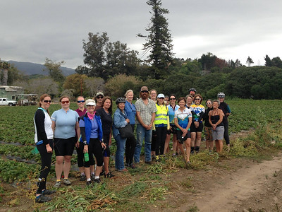 Group photo by the strawberry field