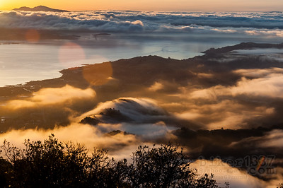 Fog Over Marin