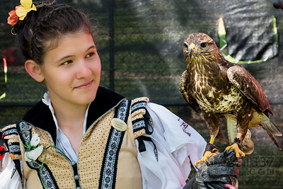 Young Falconer