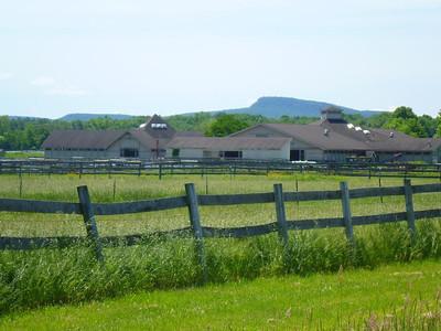 UMass Hadley Farm