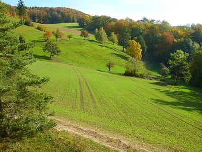 Leuenberg hillside