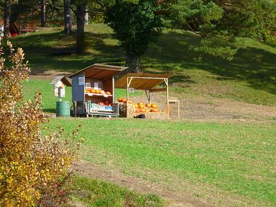 Pumpkins at Leuenberg