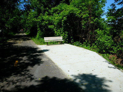 Norwottuck Rail Trail bench