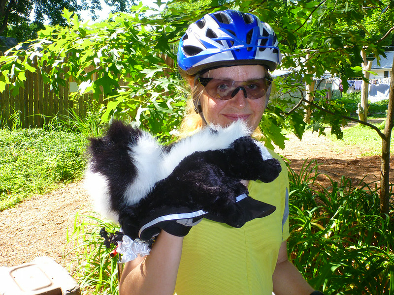Free skunk