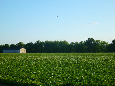 Balloons, barn, potatoes
