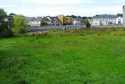 An Ennis meadow