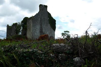 Picturesque ruin