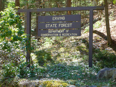 Erving State Forest