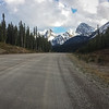 Spray Lakes road, deserted and looking kind of scenic. No bears.
