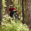 Pushing the bikes through the bush to get around deadfall