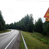 <b>27 Aug</b> Finnish moose