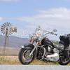 Harley Davidson_6261