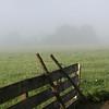 <b>27 Sept</b> Through the fog enroute to Bruck