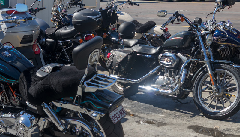 180211_Steel_Horses_South_Ride-04