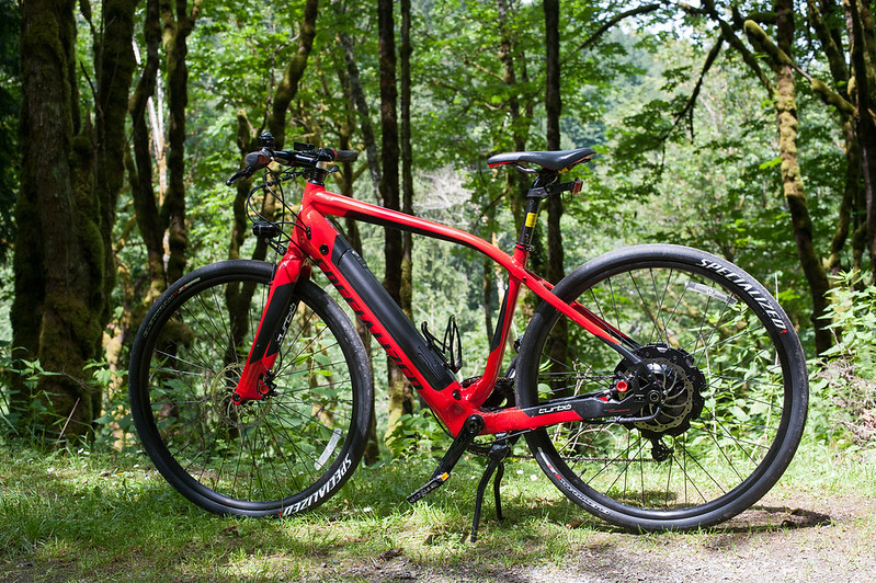 Specialized Turno