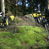 Bikes lurking in a mossy forest - we set up camp here on our second night in Sweden