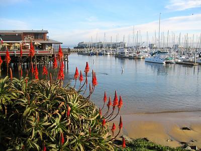 Monterey is beautiful