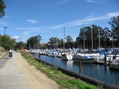 Harbor in Santa Cruz