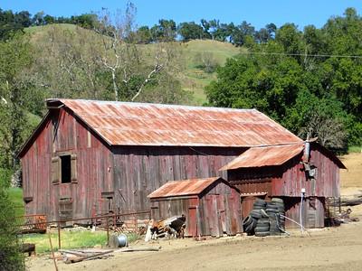 Beautiful farm (Santa Rosa Creek Rd)
