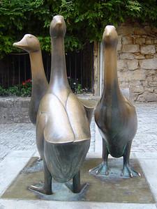 Geese of Sarlat