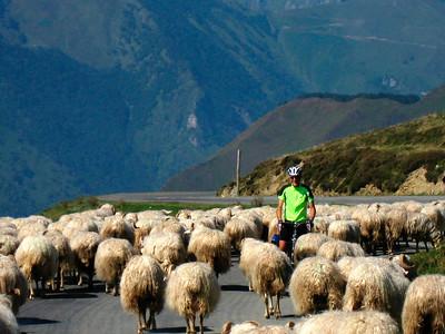 Biking in the Pyrenees