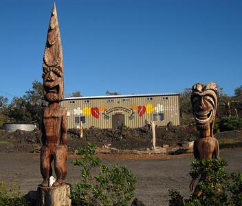 Hawaiian art in HOVE