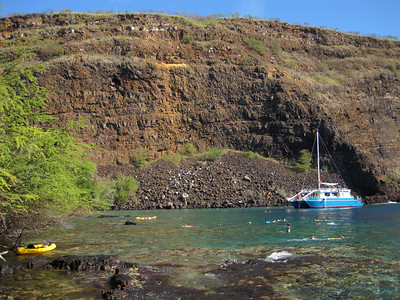 Snorkeling (Captain Cook)