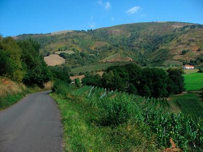 Irouleguy (vineyards)