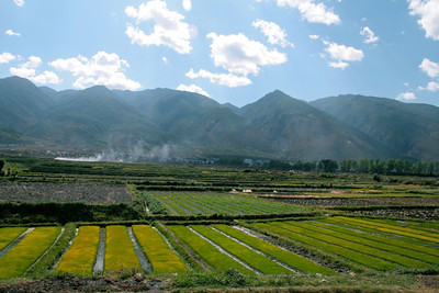 Just north of Dali, in northwestern Yunnan: bigger mountains indicate that we're approaching the edge of the Tibetan plateau but the area is still agricultural as far as the eye can see.