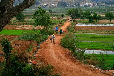 Row upon row, field after field...it seemed like southern Yunnan was endless farmland. All cultivated by hand.