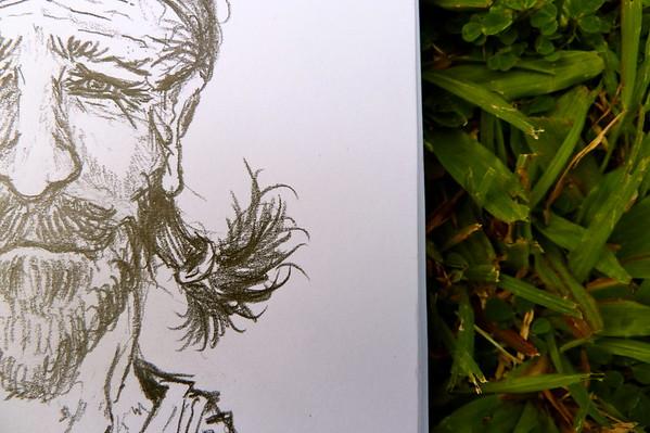 The Cassowary Man