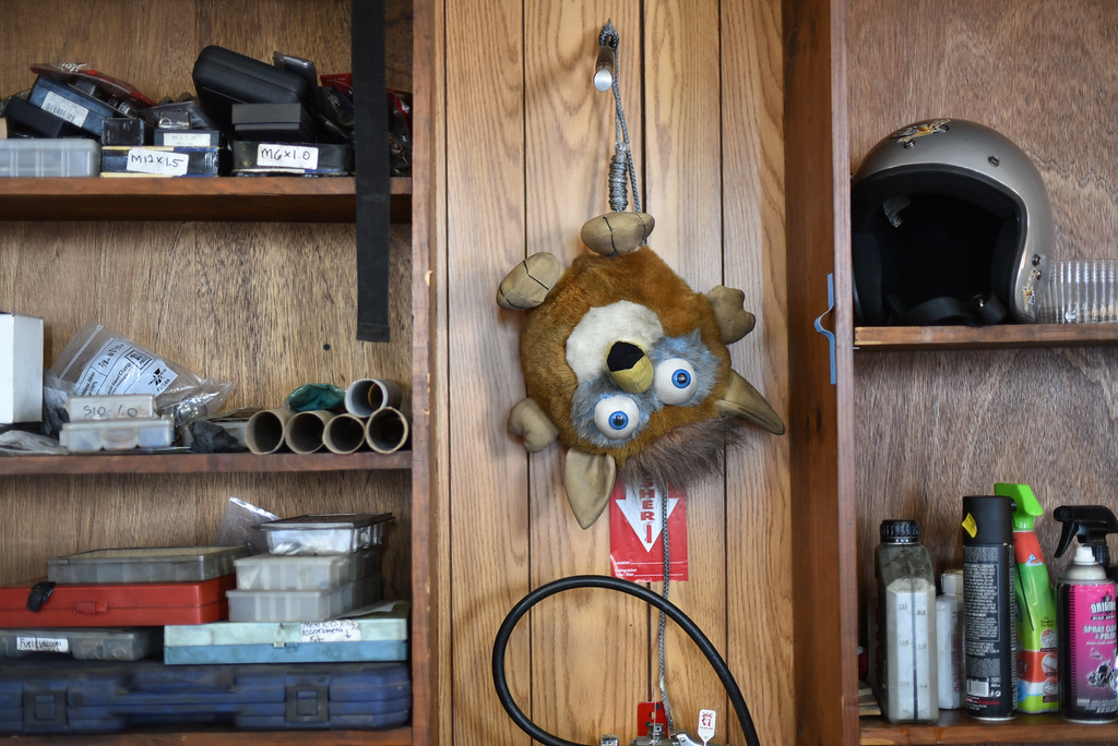 . (03/19/18 AYER MA) The shop mascot which followed Galen from various locations hangs on the wall inside the shop of Bikeworx in Ayer. SENTINEL & ENTERPRISE JEFF PORTER