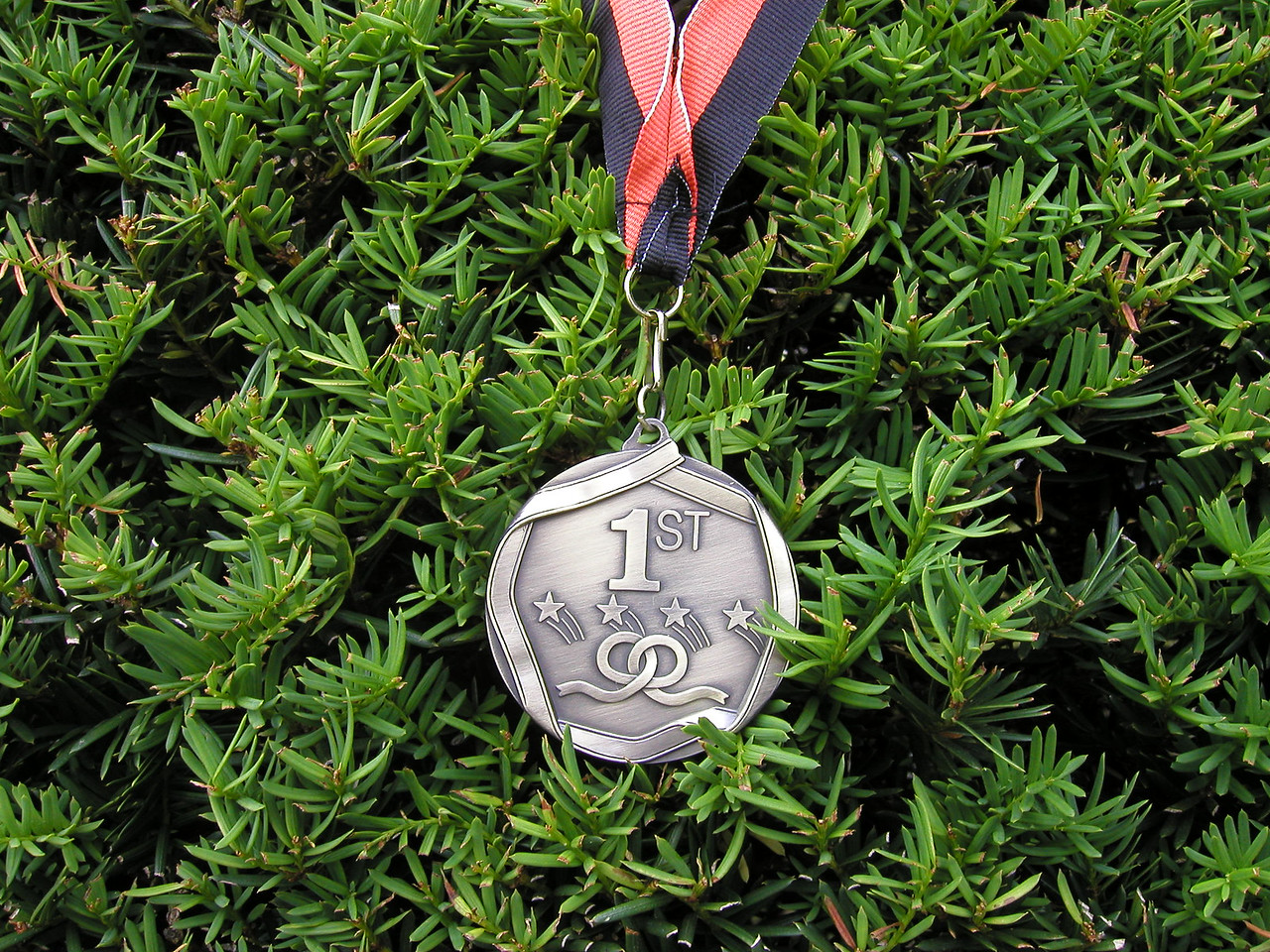 The medals were nice, here's one side & .......