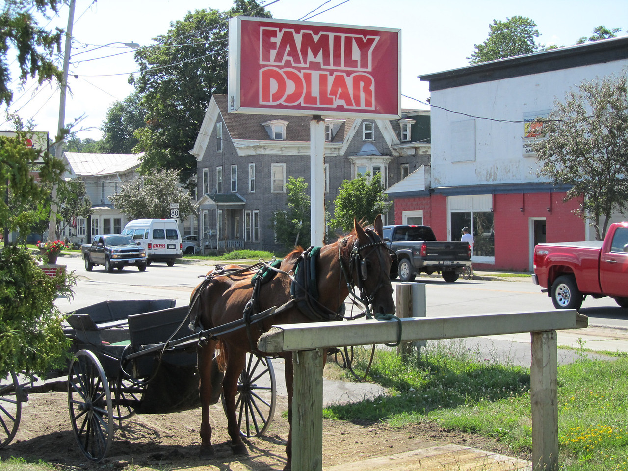 Parking spot at the Dollar Store for the Amish. Poor horse looks malnourished and was covered in flies. Not a very good life.