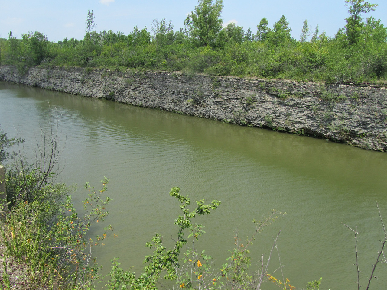 Escarpment along the canal. Too bad so stagnant, looks like a nice place to swim.