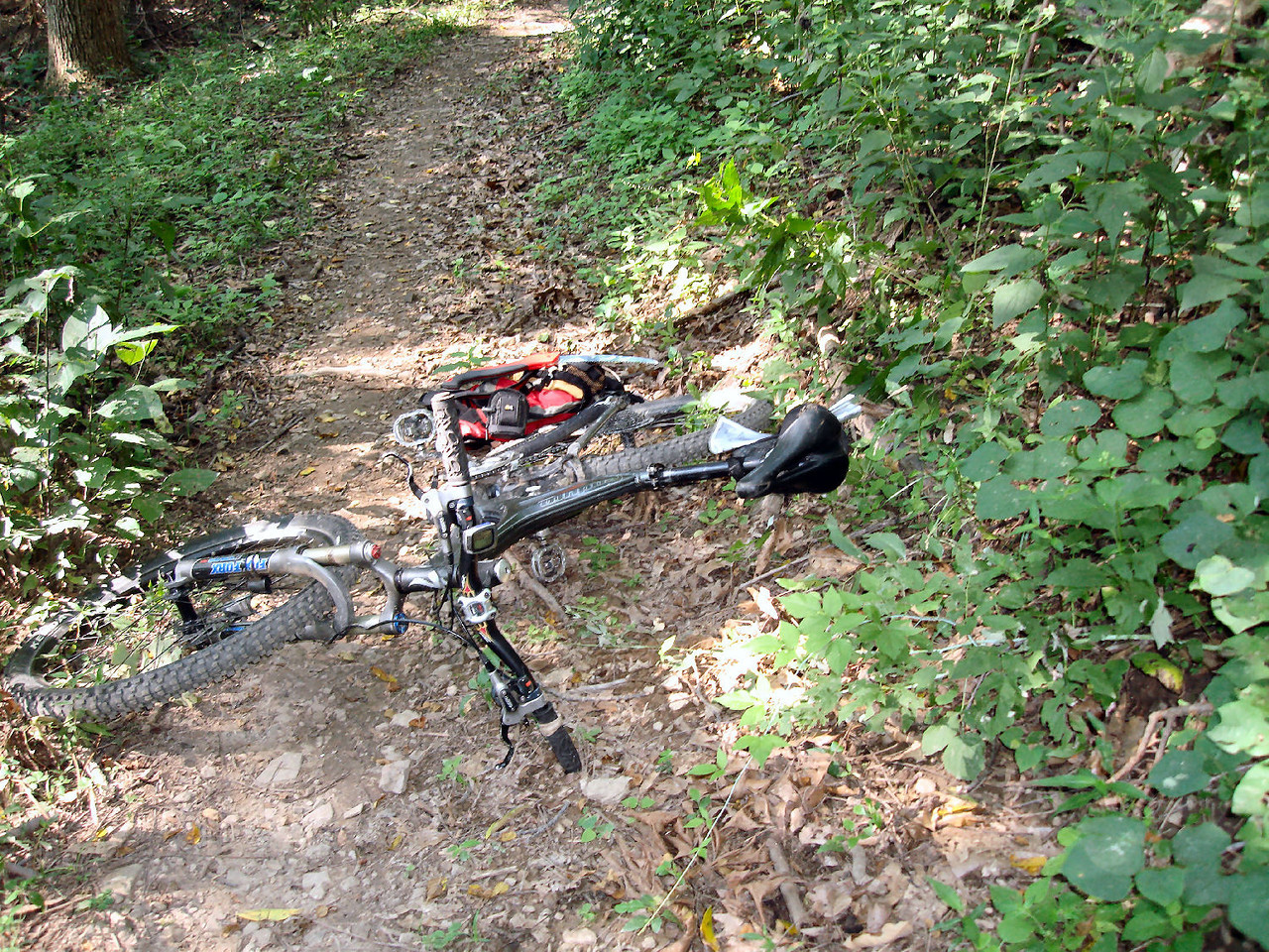 Possible, rider impalement on trail - After