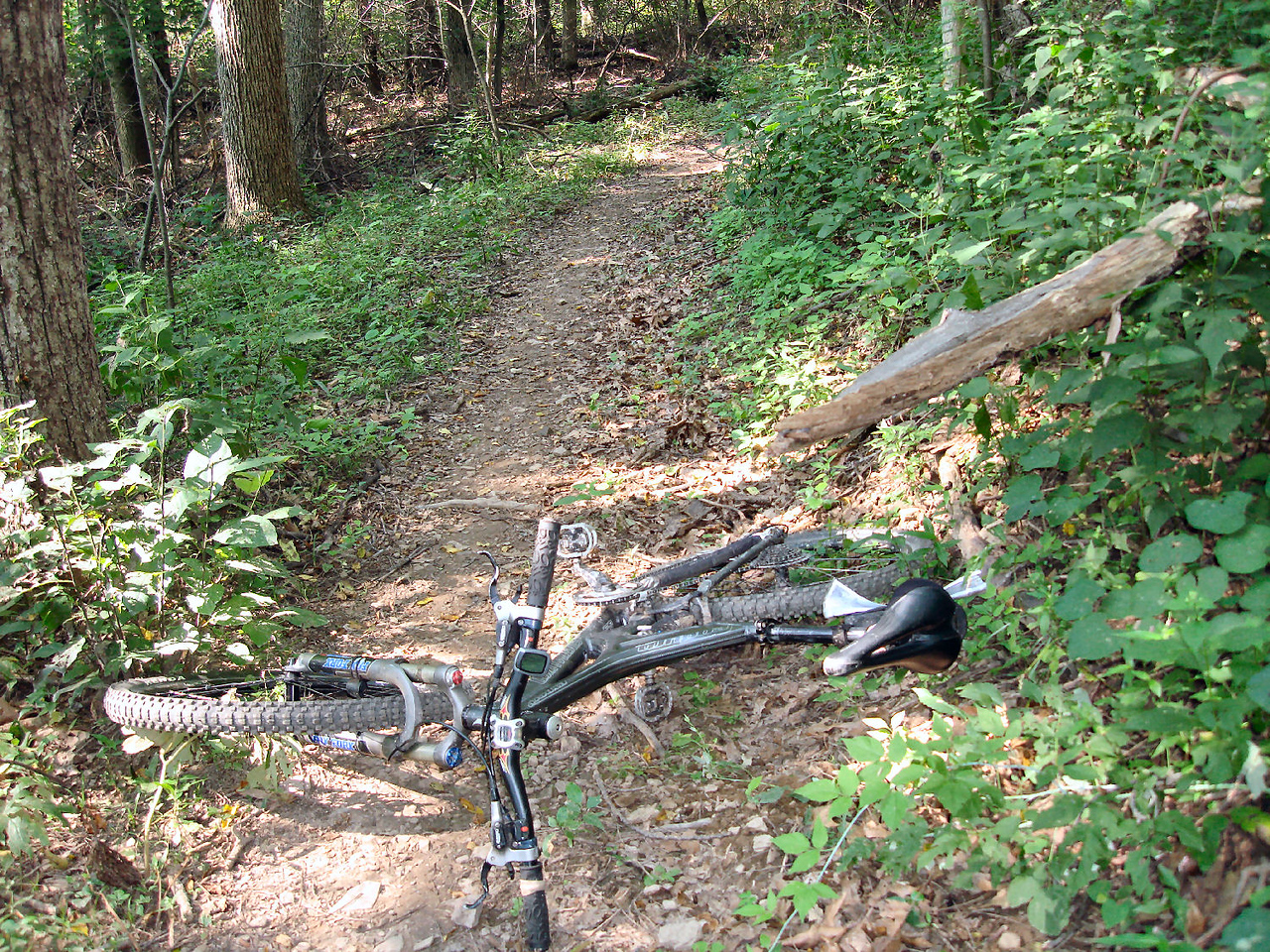 Possible, rider impalement on trail - Before
