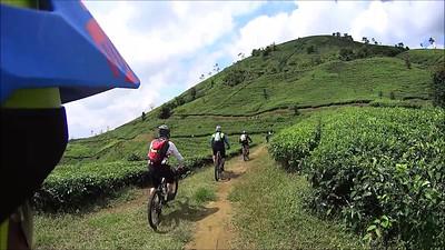 Curug Mandala Trail