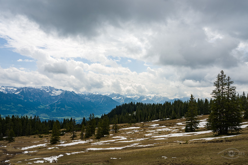 Auf dem Weg von der Hörnerbahn zur Weltcup-Hütte, Bolsterlang, Ofterschwang, Oberallgäu, Bayern, Deutschland