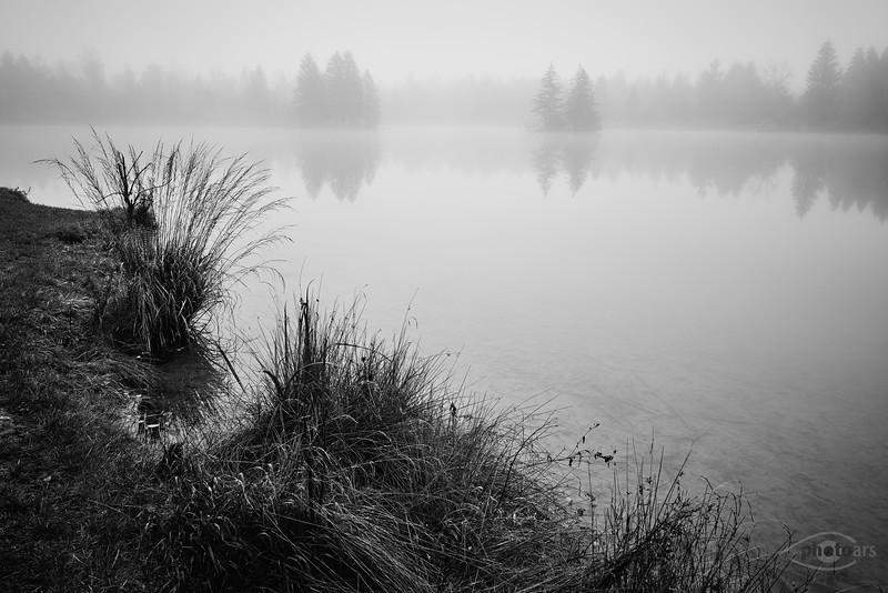 Auensee im Nebel, Königsbrunn, Schwaben, Bayern, Deutschland
