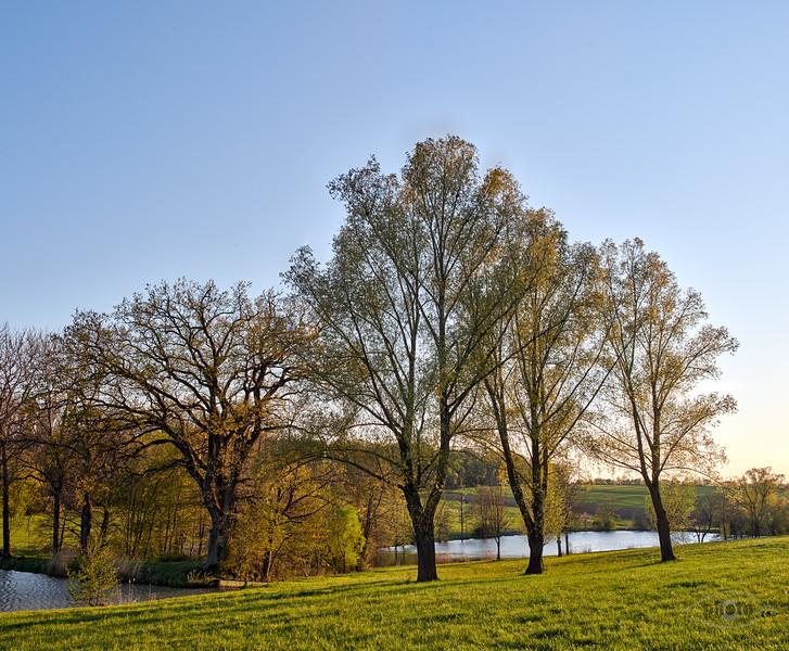 Weiher bei Kaisheim in der Abendsonne, Kaisheim, Schwaben, Bayern, Deutschland