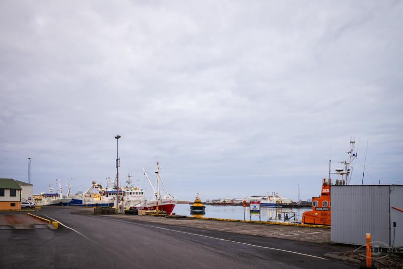 Island, Höffn, Hafen, Schwarzweiß