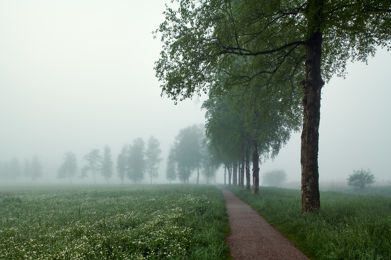 Morgens am Kochelsee, Schlehdorf, Oberbayern, Bayern, Deutschland
