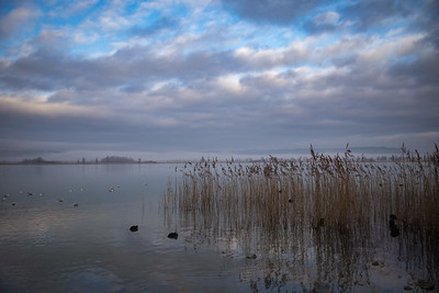 Sonnenaufgang mit Nebel am Kochelsee, Kochel am See, Oberbayern, Bayern, Deutschland