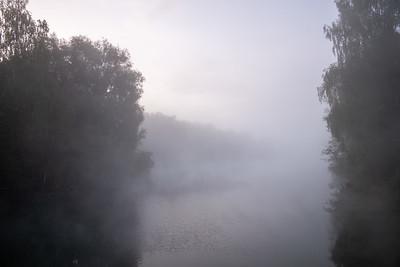 Kuhsee im Nebel, Augsburg, Schwaben, Bayern, Deutschland